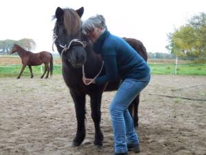 Home Welkom Kimma en Inge